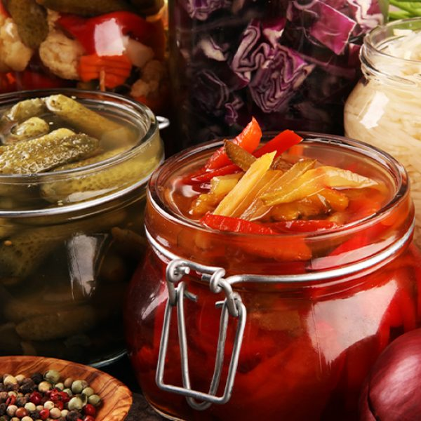 How are Fermented Multivitamins Different?